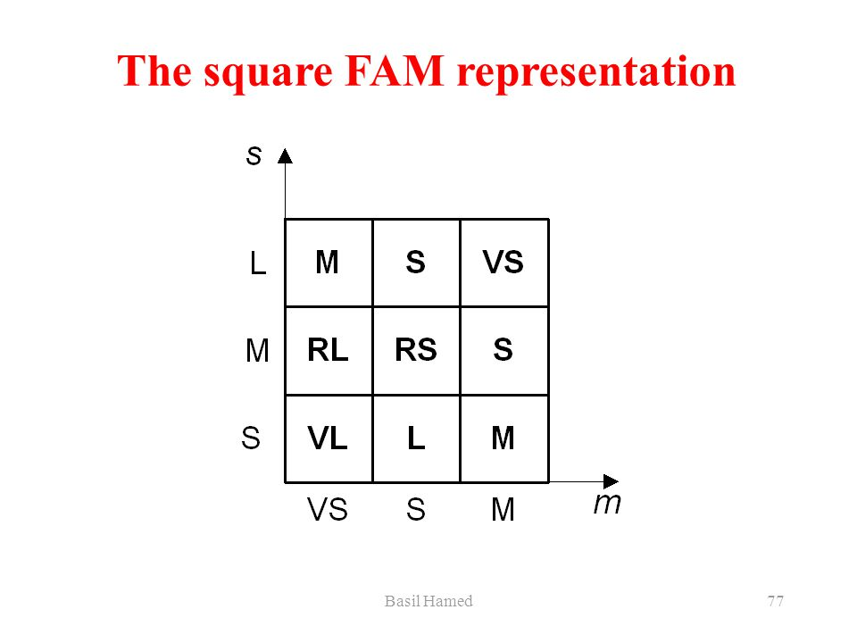 Basil Hamed77 The square FAM representation