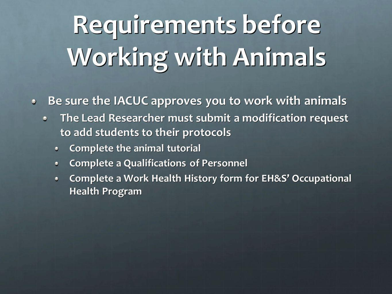 Requirements before Working with Animals Be sure the IACUC approves you to work with animals The Lead Researcher must submit a modification request to