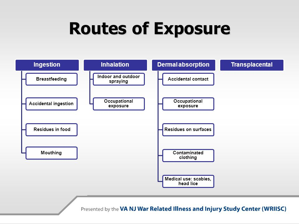 Routes of Exposure Ingestion BreastfeedingAccidental ingestion Residues in foodMouthing Inhalation Indoor and outdoor spraying Occupational exposure D