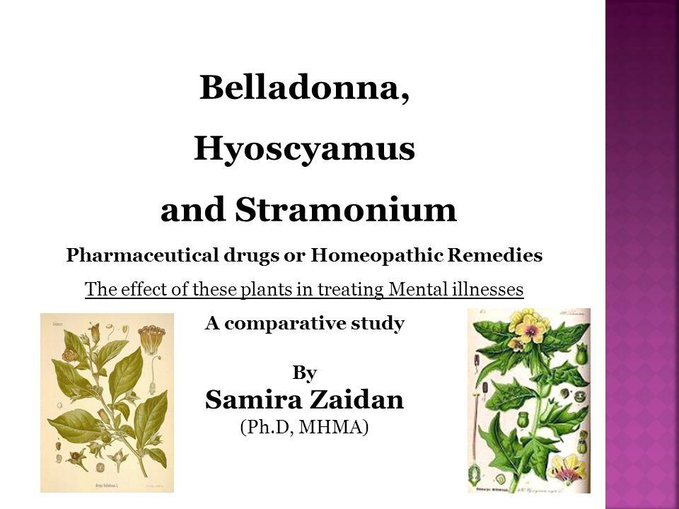 Physically, Belladonna, Hyoscyamus and Stramonium look different as plants.