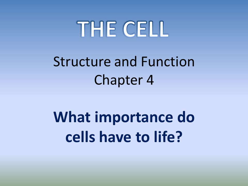 Structure and Function Chapter 4 What importance do cells have to life?