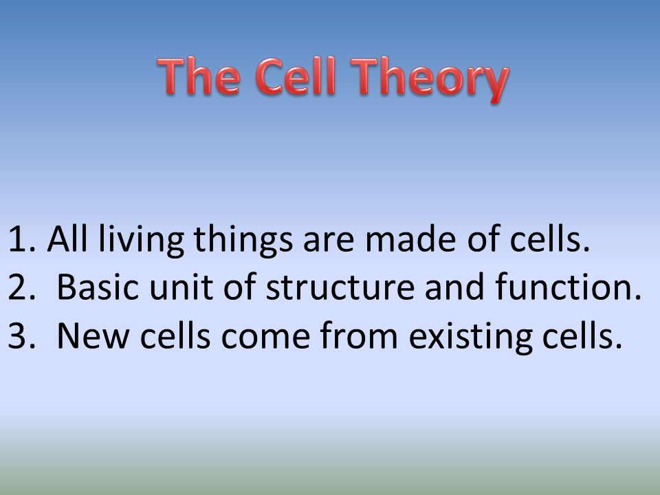 - Use fluorescent labels to follow molecules through cells.