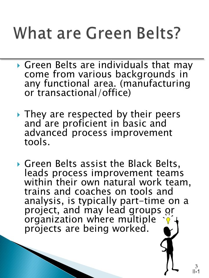 3 Green Belts are individuals that may come from various backgrounds in any functional area.