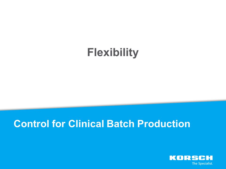 Flexibility Control for Clinical Batch Production