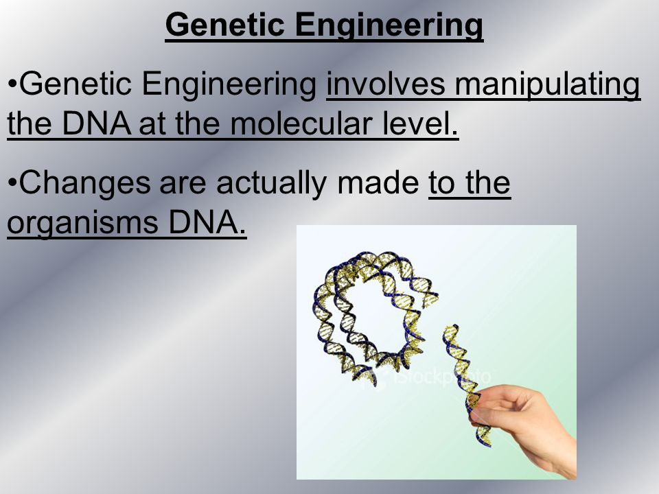 Genetic Engineering Genetic Engineering involves manipulating the DNA at the molecular level. Changes are actually made to the organisms DNA.