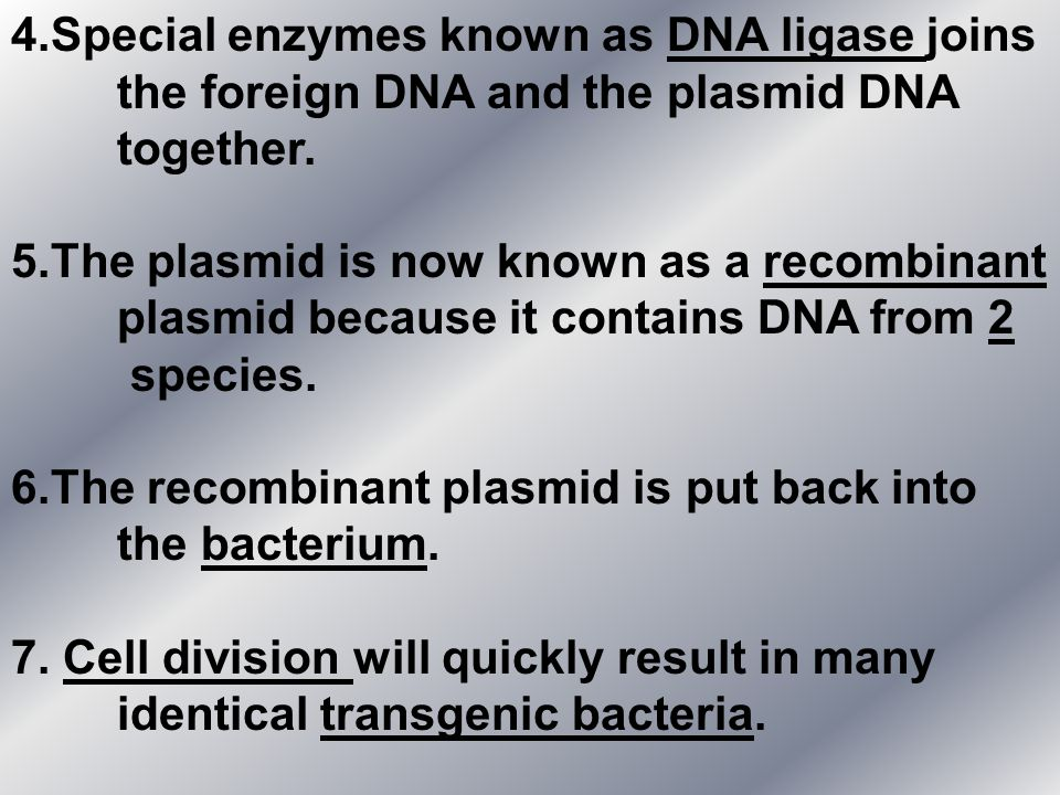 4.Special enzymes known as DNA ligase joins the foreign DNA and the plasmid DNA together. 5.The plasmid is now known as a recombinant plasmid because