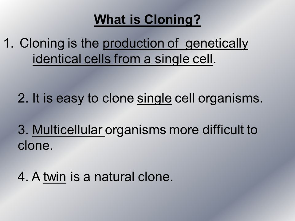 What is Cloning? 1.Cloning is the production of genetically identical cells from a single cell. 2. It is easy to clone single cell organisms. 3. Multi