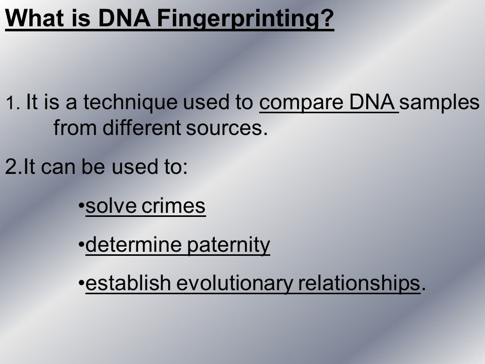 What is DNA Fingerprinting? 1. It is a technique used to compare DNA samples from different sources. 2.It can be used to: solve crimes determine pater