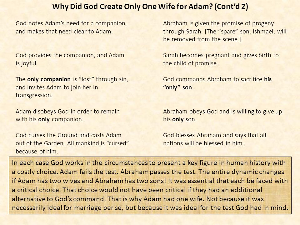 Why Did God Create Only One Wife for Adam? (Contd 2) God notes Adams need for a companion, and makes that need clear to Adam. God provides the compani