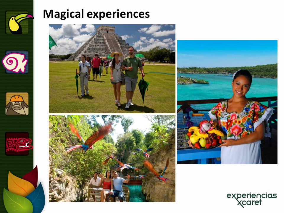 Magical experiences