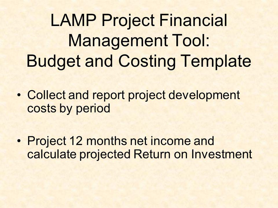 LAMP Project Financial Management Tool: Budget and Costing Template Collect and report project development costs by period Project 12 months net incom