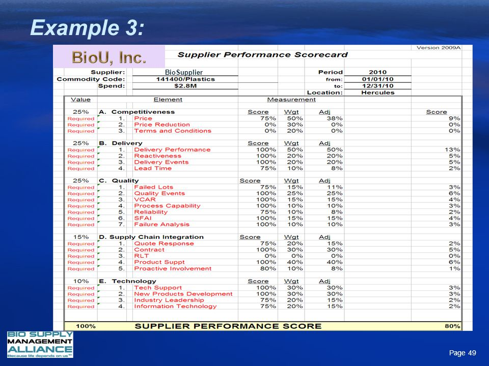 Example 3: BioSupplier Page 49