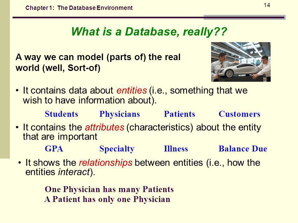 Chapter 1: The Database Environment 14 It contains data about entities (i.e., something that we wish to have information about).