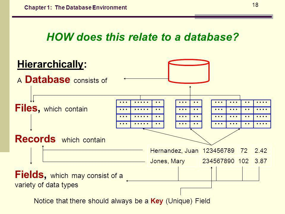 Chapter 1: The Database Environment 18 Hierarchically: A Database consists of Files, which contain Records, which contain Fields, which may consist of a variety of data types Jones, Mary2345678901023.87 Hernandez, Juan123456789722.42 Notice that there should always be a Key (Unique) Field HOW does this relate to a database?