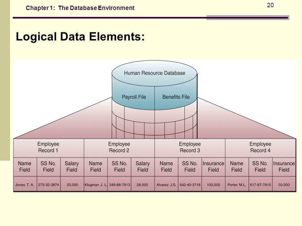 Chapter 1: The Database Environment 20 Logical Data Elements: