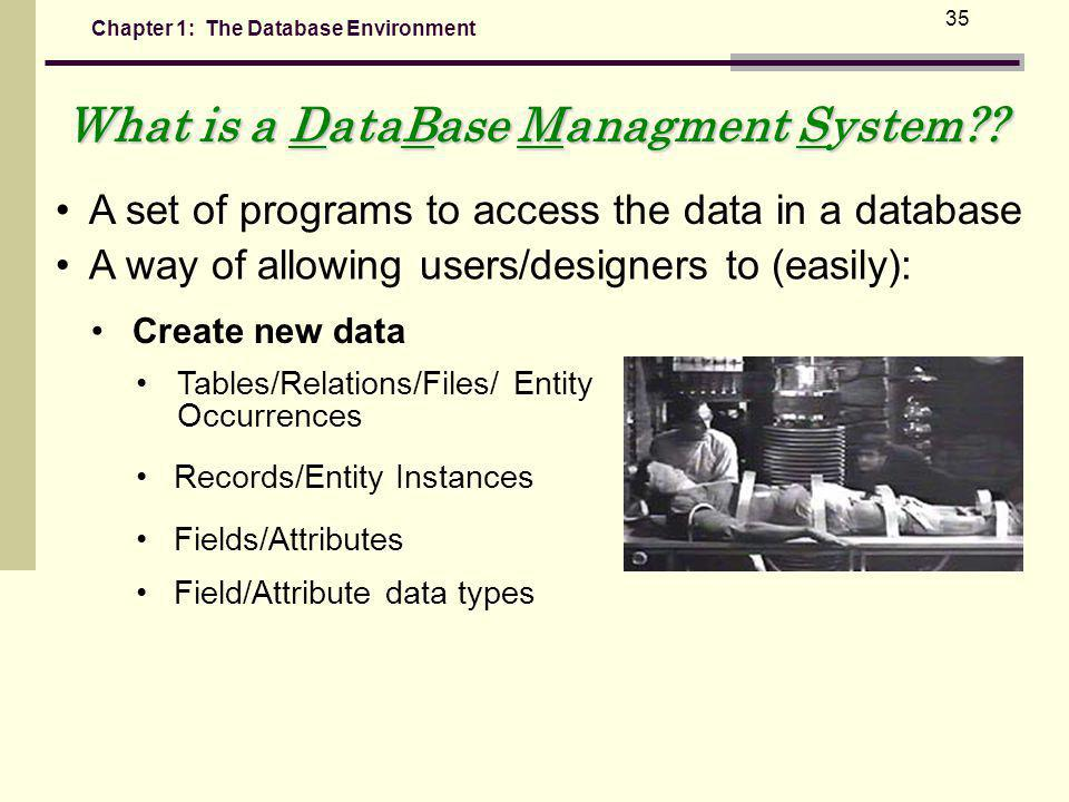 Chapter 1: The Database Environment 35 A set of programs to access the data in a database A way of allowing users/designers to (easily): Create new data Tables/Relations/Files/ Entity Occurrences Records/Entity Instances Fields/Attributes Field/Attribute data types What is a DataBase Managment System??