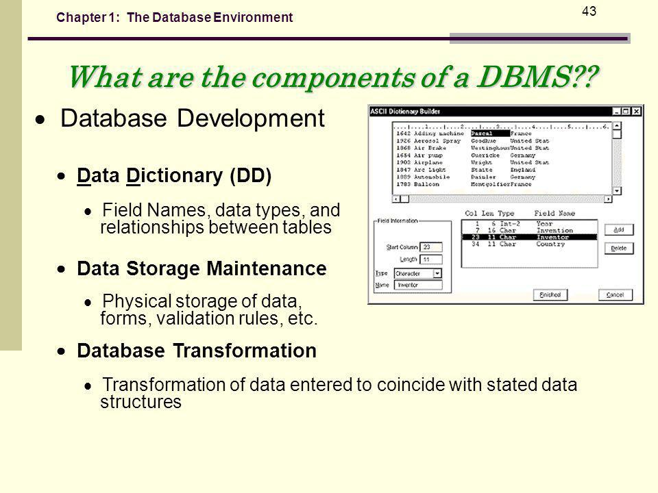 Chapter 1: The Database Environment 43 What are the components of a DBMS?.