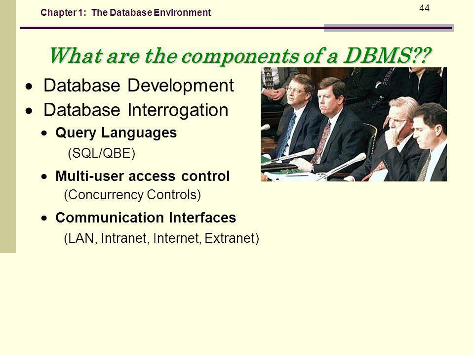 Chapter 1: The Database Environment 44 What are the components of a DBMS?.