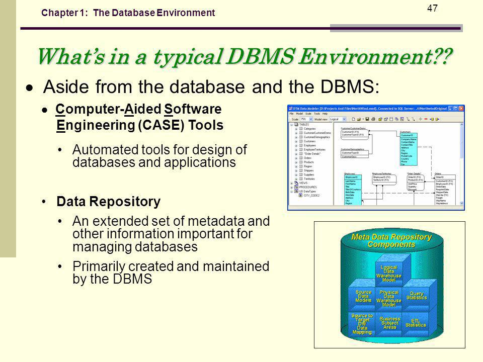Chapter 1: The Database Environment 47 Whats in a typical DBMS Environment?.
