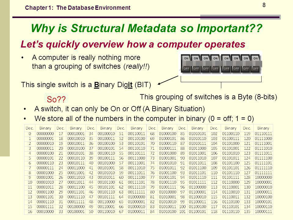 Chapter 1: The Database Environment 8 Why is Structural Metadata so Important?.