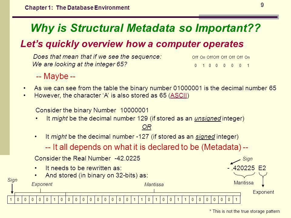 Chapter 1: The Database Environment 9 Why is Structural Metadata so Important?.