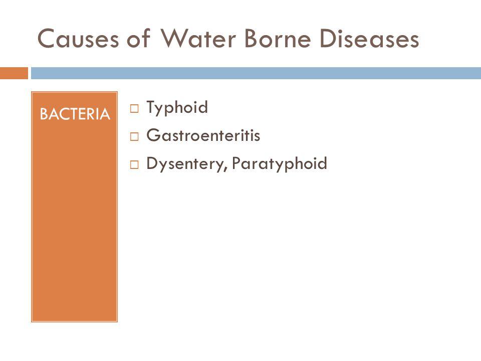 Causes of Water Borne Diseases BACTERIA Typhoid Gastroenteritis Dysentery, Paratyphoid