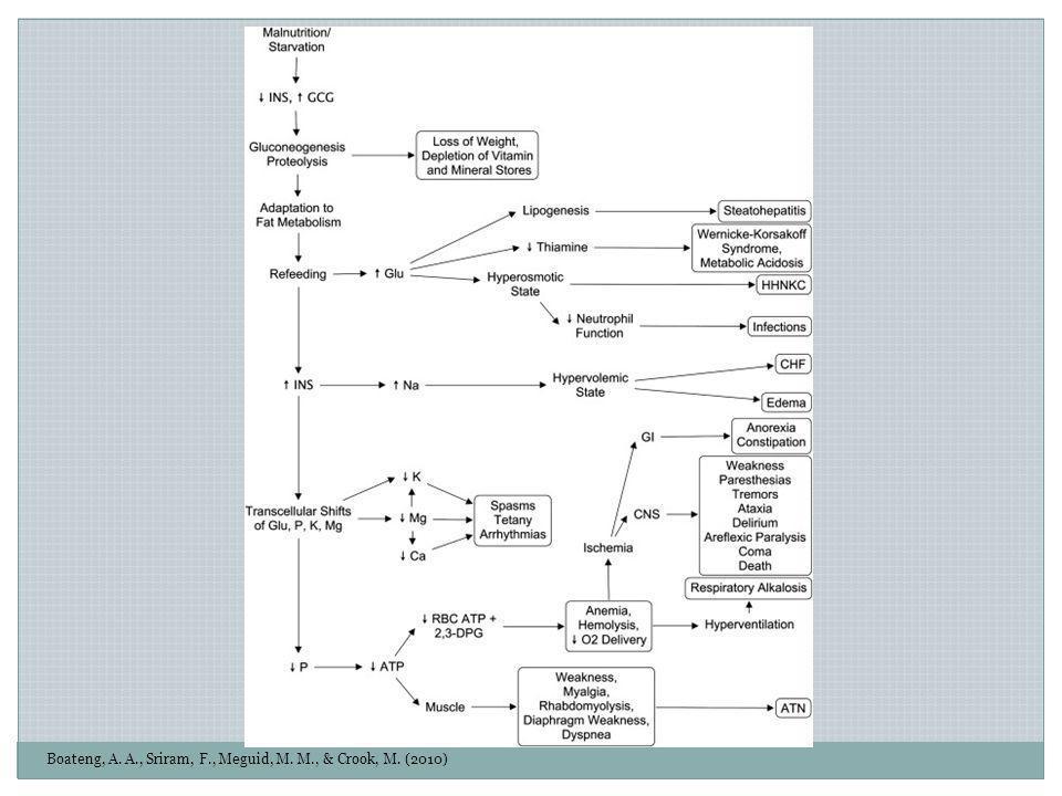 Boateng, A. A., Sriram, F., Meguid, M. M., & Crook, M. (2010)