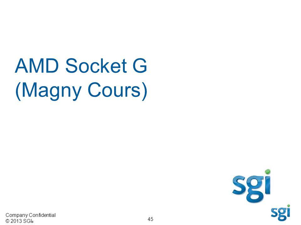 Company Confidential © 2013 SGI ® 45 AMD Socket G (Magny Cours)