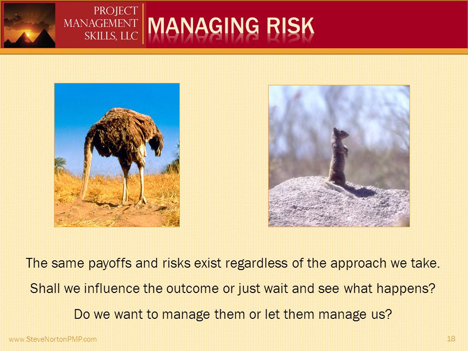 www.SteveNortonPMP.com 18 The same payoffs and risks exist regardless of the approach we take.