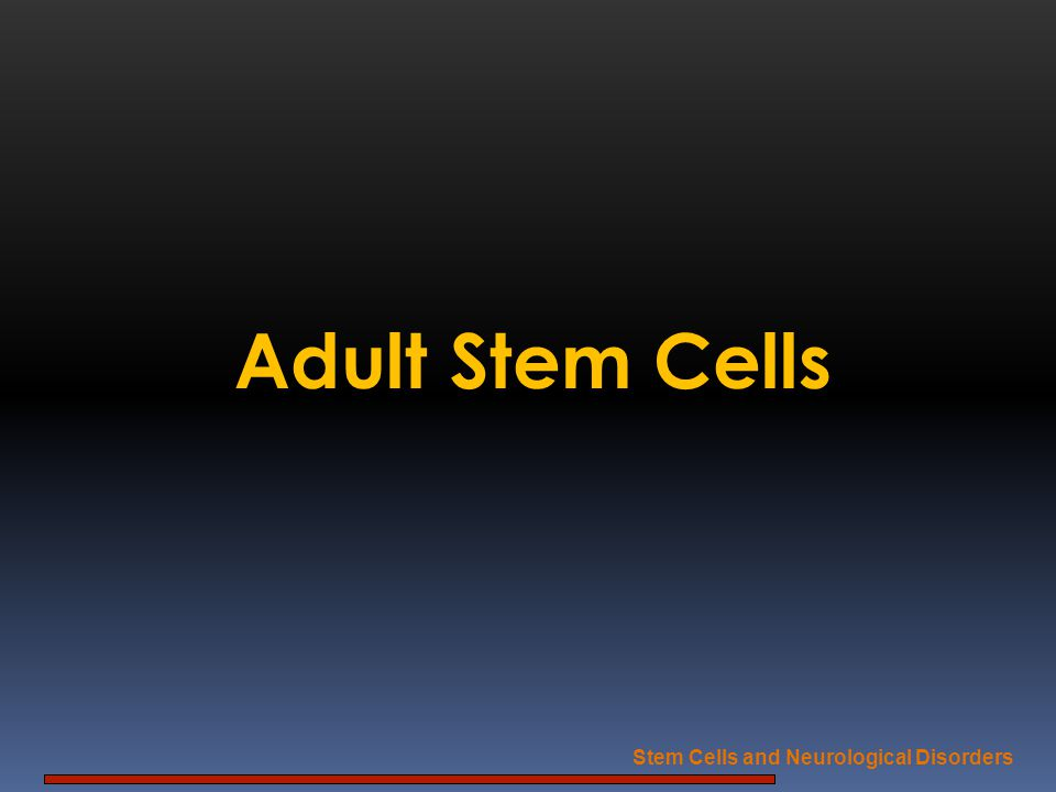 Adult Stem Cells Stem Cells and Neurological Disorders