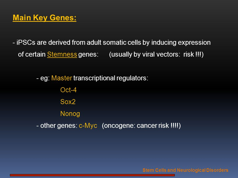 Main Key Genes: - iPSCs are derived from adult somatic cells by inducing expression of certain Stemness genes: (usually by viral vectors: risk !!!) -