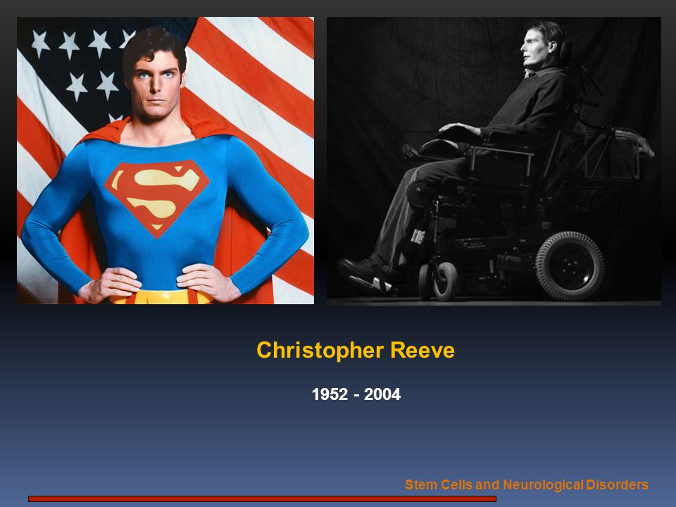 Stem Cells and Neurological Disorders Christopher Reeve 1952 - 2004