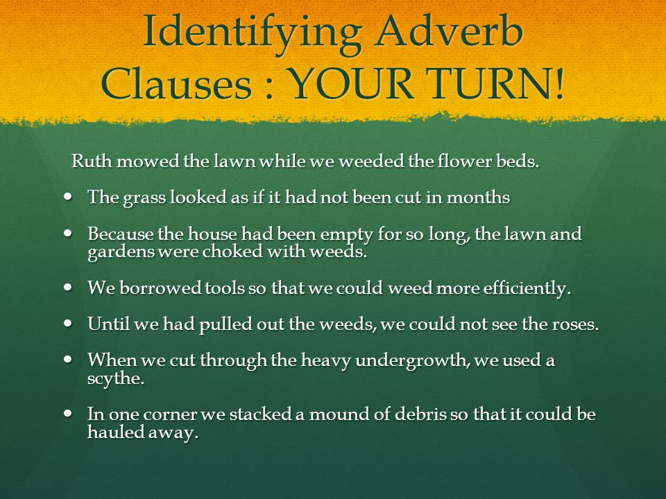 Identifying Adverb Clauses : YOUR TURN.Ruth mowed the lawn while we weeded the flower beds.
