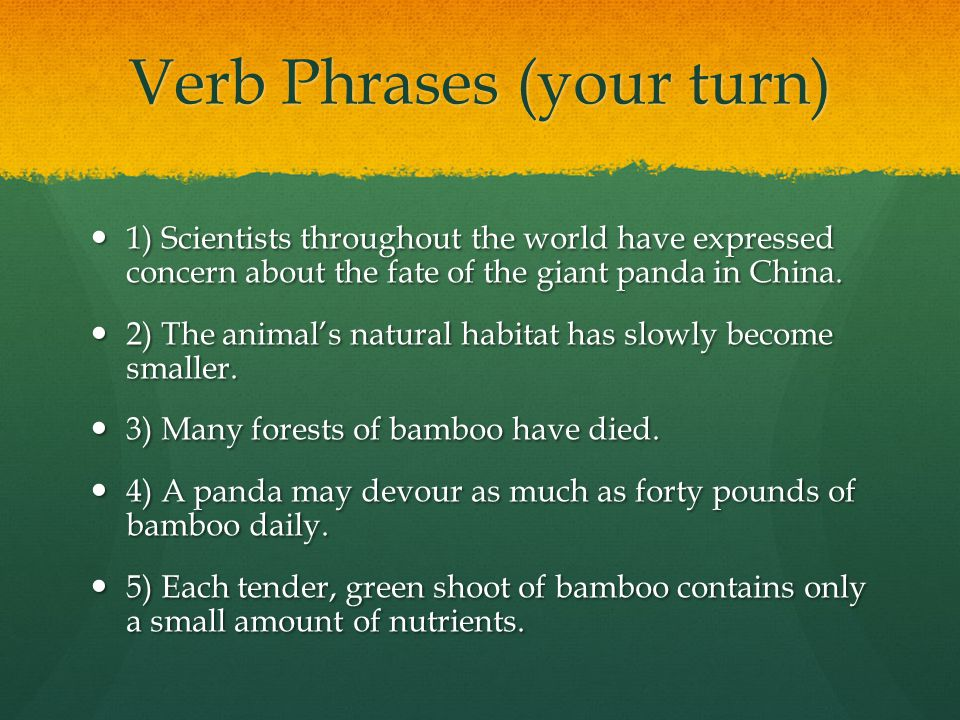 Verb Phrases (your turn) 1) Scientists throughout the world have expressed concern about the fate of the giant panda in China.