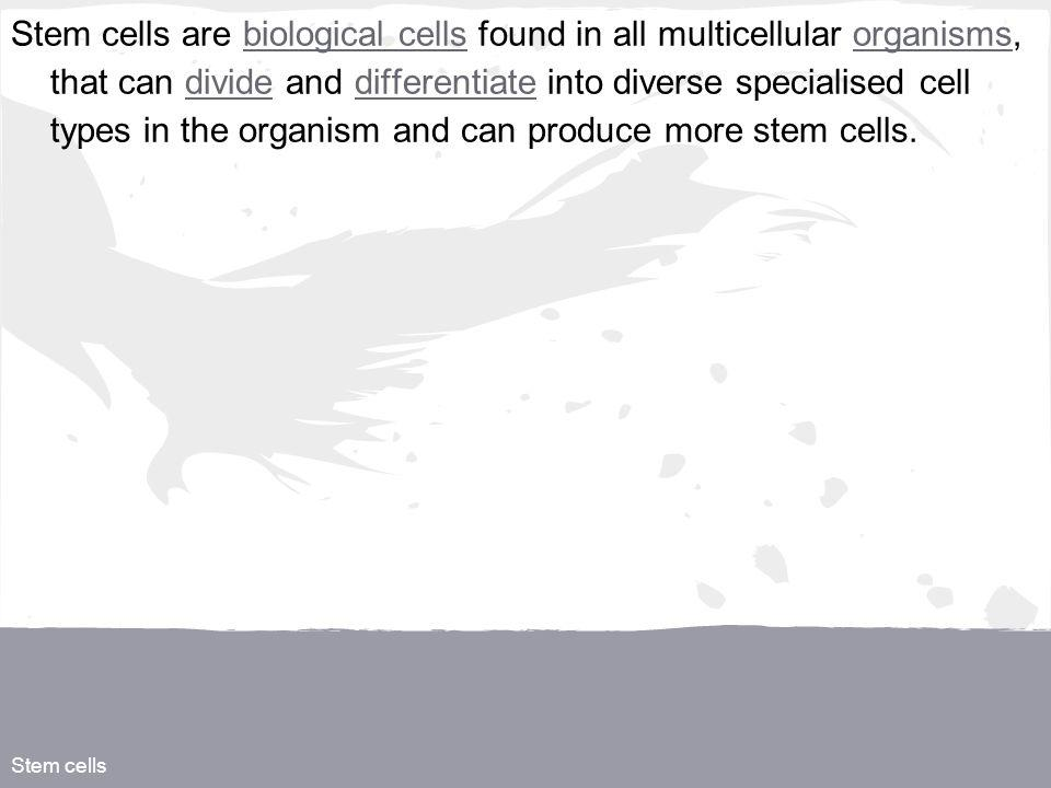 Stem cells Stem cells are biological cells found in all multicellular organisms, that can divide and differentiate into diverse specialised cell types in the organism and can produce more stem cells.biological cellsorganismsdividedifferentiate