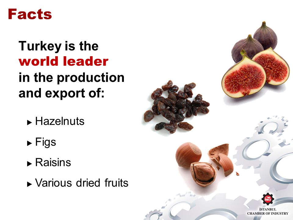 Turkey is the world leader in the production and export of: Hazelnuts Figs Raisins Various dried fruits Facts