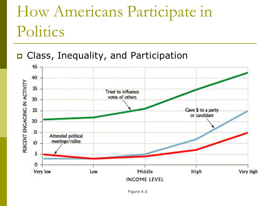Figure 6.5 How Americans Participate in Politics Class, Inequality, and Participation
