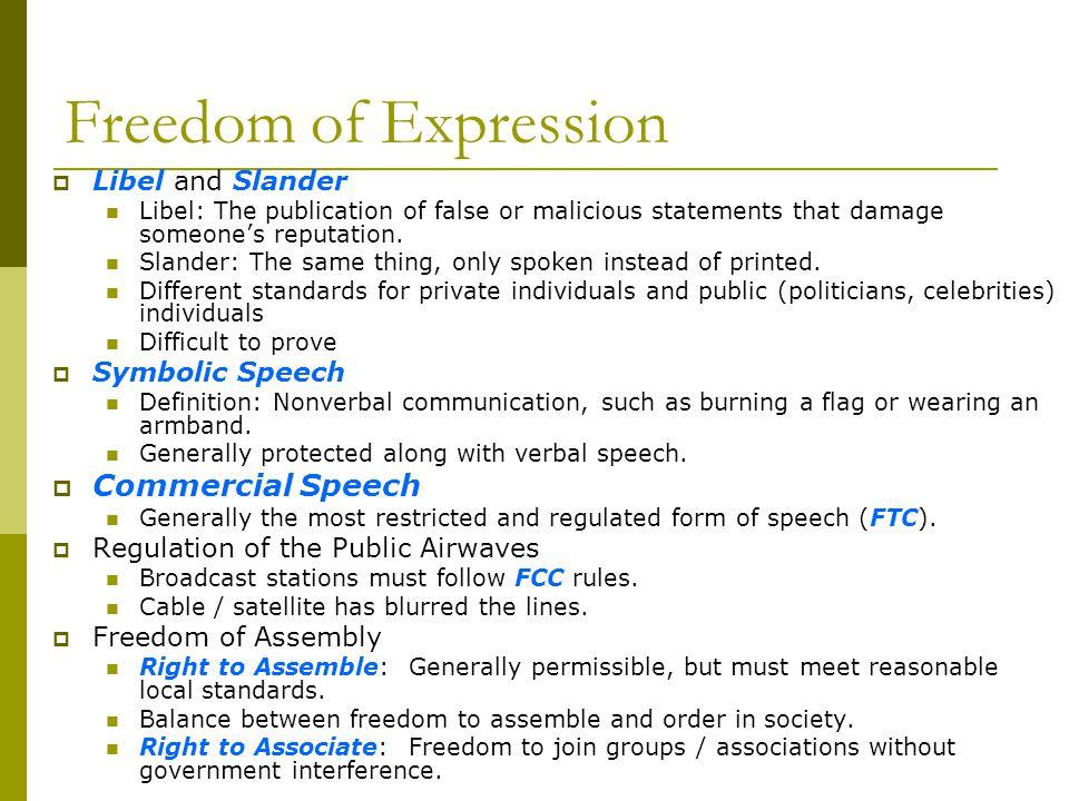Freedom of Expression Libel and Slander Libel: The publication of false or malicious statements that damage someones reputation. Slander: The same thi
