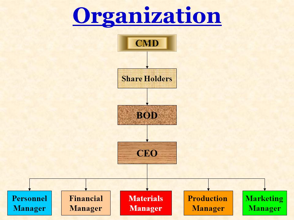 Organization CMD Share Holders BOD CEO Personnel Manager Financial Manager Materials Manager Production Manager Marketing Manager
