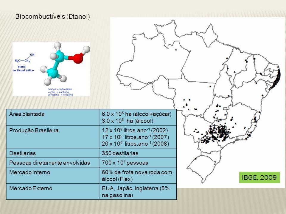 Biocombustíveis (Etanol) Área plantada6,0 x 10 6 ha (álccol+açúcar) 3,0 x 10 6 ha (álcool) Produção Brasileira12 x 10 9 litros.ano -1 (2002) 17 x 10 9 litros.ano -1 (2007) 20 x 10 9 litros.ano -1 (2008) Destilarias350 destilarias Pessoas diretamente envolvidas700 x 10 3 pessoas Mercado Interno60% da frota nova roda com álcool (Flex) Mercado ExternoEUA, Japão, Inglaterra (5% na gasolina) IBGE, 2009