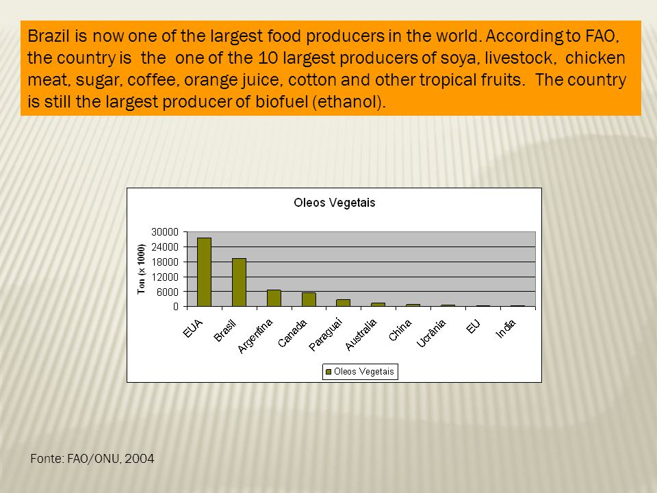 Fonte: FAO/ONU, 2004 Brazil is now one of the largest food producers in the world. According to FAO, the country is the one of the 10 largest producer