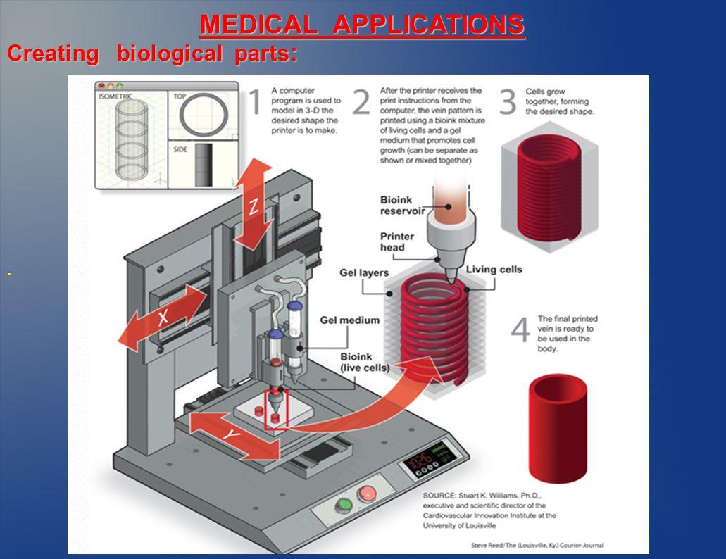 Creating biological parts :. MEDICAL APPLICATIONS