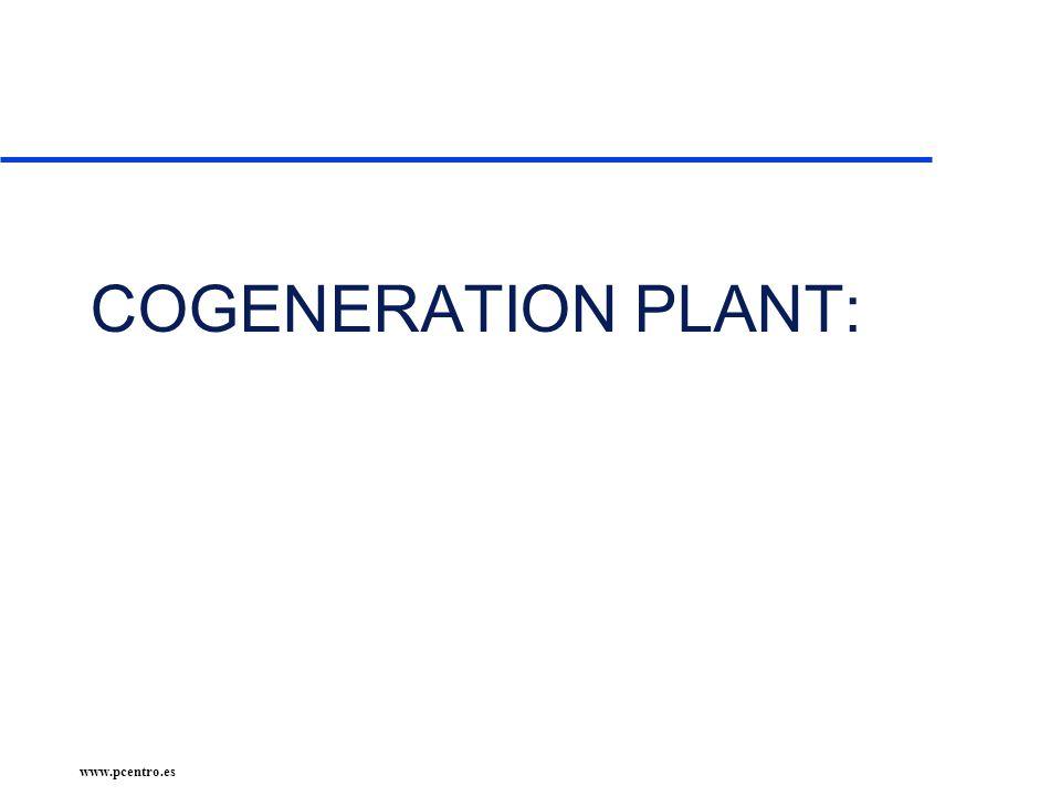 www.pcentro.es COGENERATION PLANT: