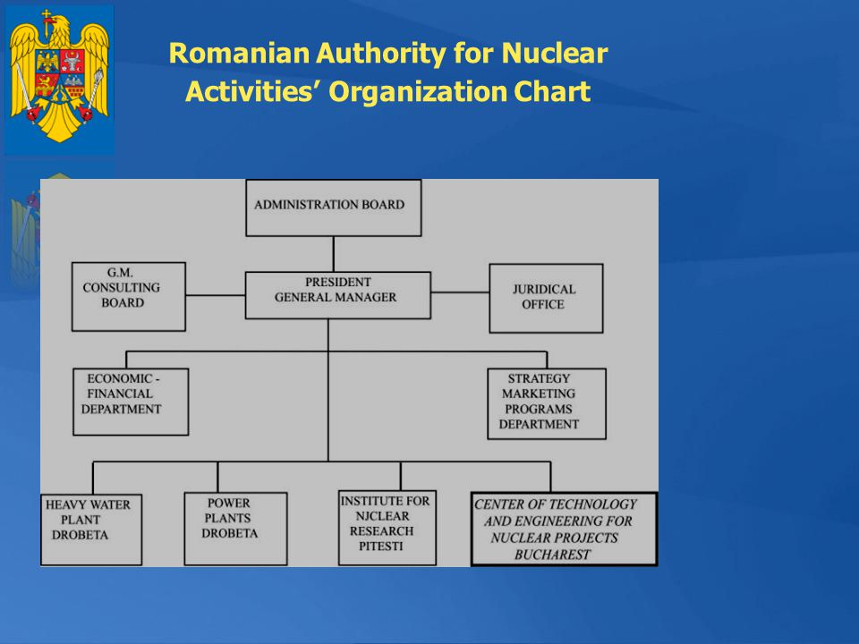 Romanian Authority for Nuclear Activities Organization Chart