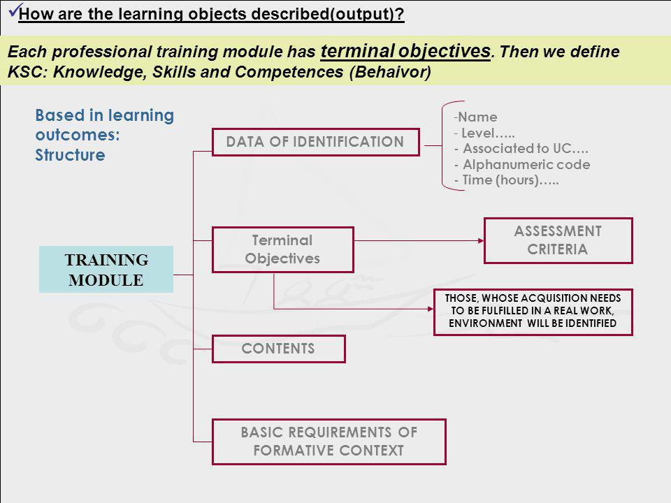 How are the learning objects described(output)? TRAINING MODULE - Name - Level….. - Associated to UC…. - Alphanumeric code - Time (hours)….. DATA OF I