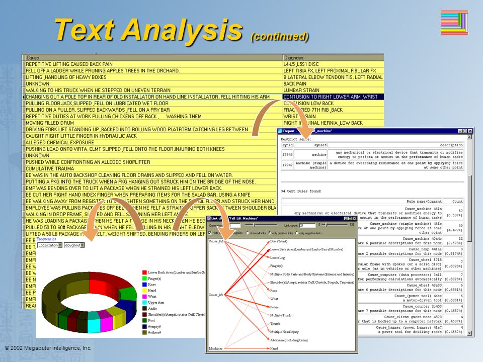 © 2002 Megaputer intelligence, Inc. Text Analysis (continued)