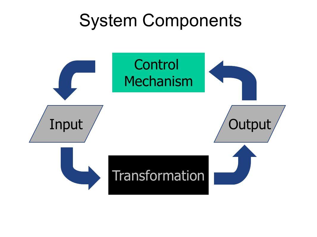 System Components Transformation InputOutput Control Mechanism