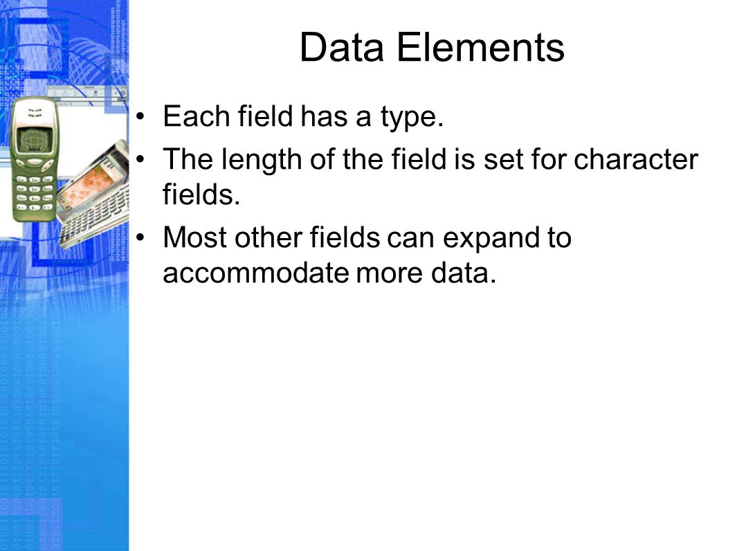 Data Elements Each field has a type. The length of the field is set for character fields.