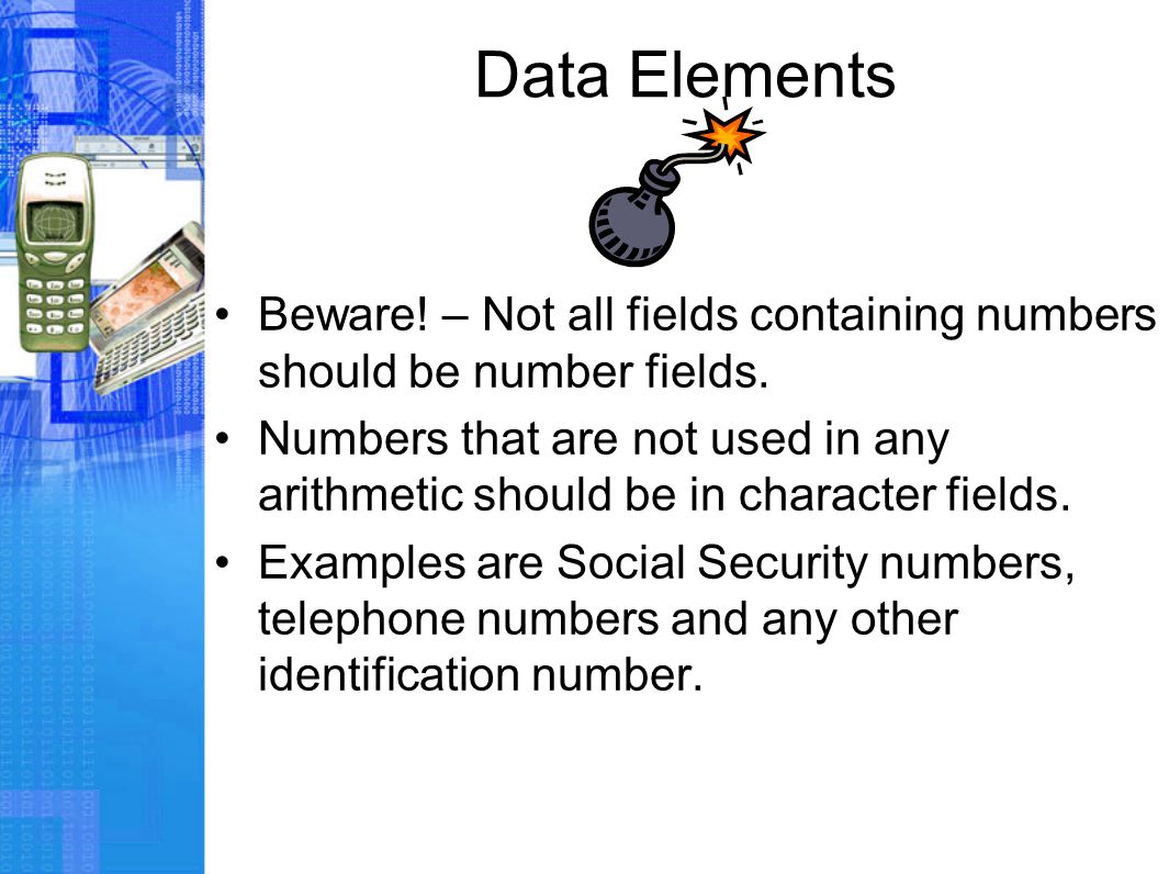 Data Elements Beware. – Not all fields containing numbers should be number fields.