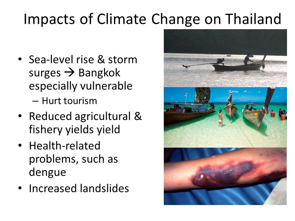 Impacts of Climate Change on Thailand Sea-level rise & storm surges Bangkok especially vulnerable – Hurt tourism Reduced agricultural & fishery yields yield Health-related problems, such as dengue Increased landslides